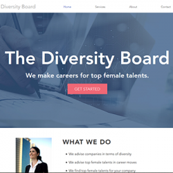 Vestalia Vision and Diversity Board